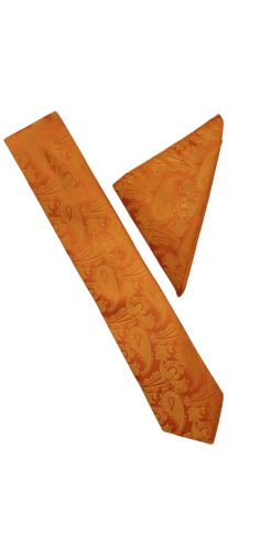 Orange Paisley Tie and Hankie