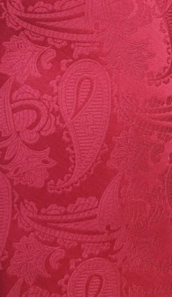 Red Paisley Tie and Hankie