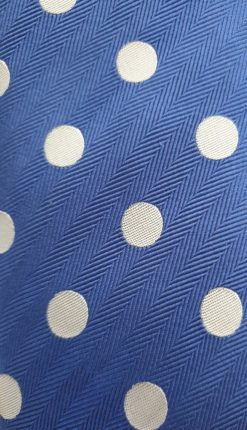 Blue and White Spot Tie