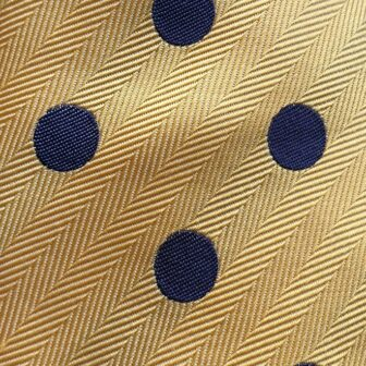 Blue and Yellow Spot Tie